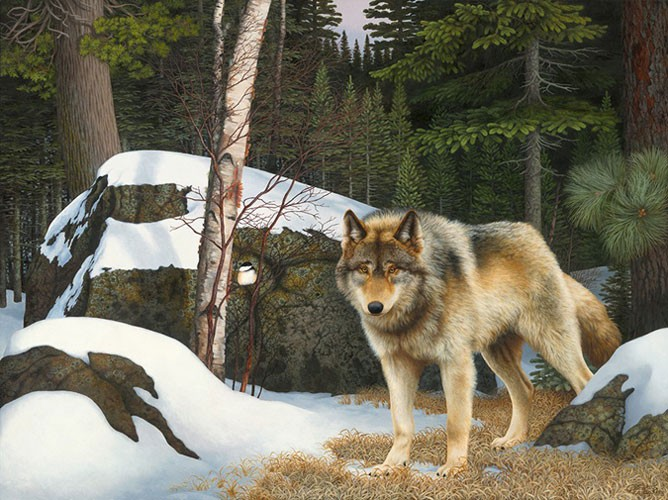 """""""Curious Company"""" (Eastern Gray Wolf- Superior National Forest) Copyright 2010 - 18 X 24"""