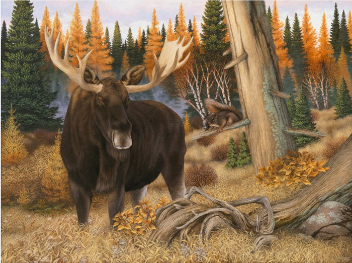 The Monarch and the Messenger (Bull Moose and Red squirrel-Superior National Forest) Copyright 2008 - 18 X 24