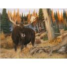 Bull Moose red Squirrel