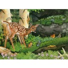 New friends in the old forest-(Fawn) Copyright 1989 - 15 1/8  x 20 ½