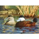 Ruddy Ducks-Copyright 1989 - 6 3/8 x 8 7/8