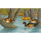 """""""The Contest""""(Wood ducks in spring)-Copyright 1984 - 15 x 25"""