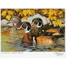 1984 Minnesota Migratory Waterfowl Print & Stamp Copyright 1984 - 6 ½ x 9